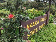 ハワイ島癒しの旅。アカカフォールズで心とカラダをリフレッシュ!!