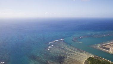 ハワイ好きなら応援を 今こそハワイ島へ行こう