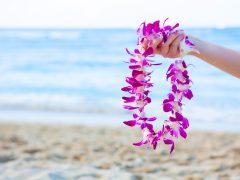 無料で楽しむハワイアンカルチャー♪レイメイキングのワークショップに参加してみた!