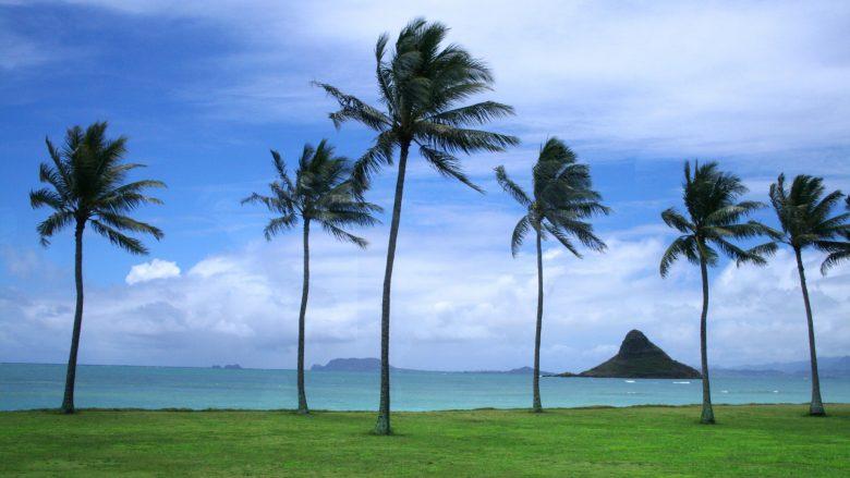 【ハワイ神話】ペレの妹。卵から生まれた女神ヒイアカ
