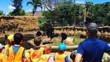 キッズに英語を体験させよう!ホノルル動物園のトワイライトツアー