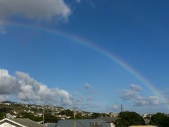 【ハワイ初心者必見】初めてのハワイを楽しむために知っておくべきポイント5つ