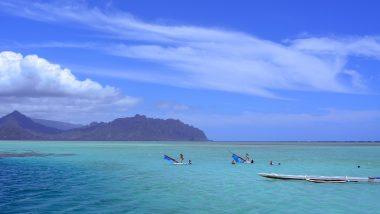 「キャプテンブルース天国の海ツアー」を120%楽しむための準備とは?