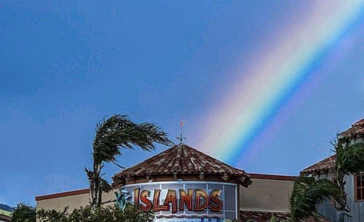 アラモアナでまったり過ごせる穴場「アイランド・ファイン・バーガー&ドリンク/Islands Fine Burgers&Drinks」
