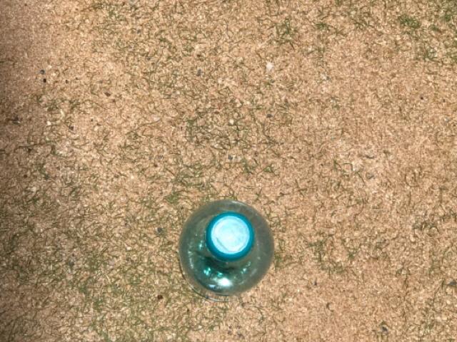 ラハイナヌーン ペットボトルを上から撮影