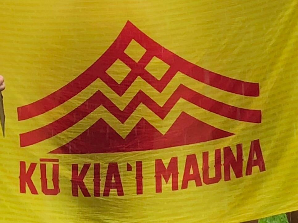 反対派の旗