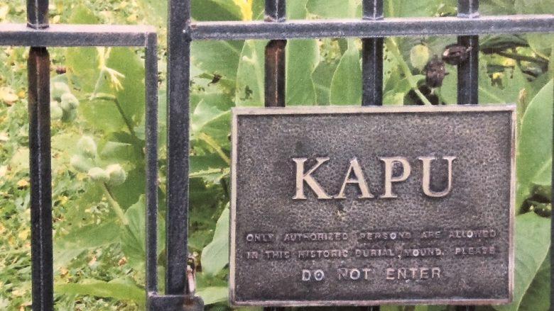 歴史で見るハワイの聖地「クカニロコ」のバースストーン