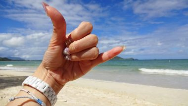 この夏おすすめ!ハワイを学び、ハワイを味わうスポット