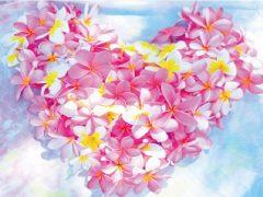 2019年9月藤沢で「Hawaiian Healing/ハワイアンヒーリング」が開催!