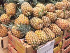 パイナップルはハワイ発祥?おすすめのパイナップルスイーツもご紹介!