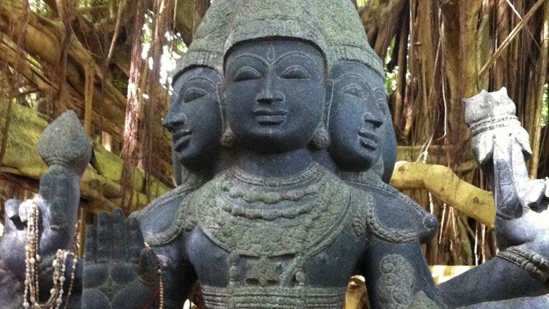 カウアイ島でパワーチャージ、「神聖な森」へGO!