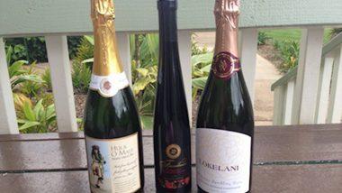 マウイ島のワイナリーでハワイ産のワインを嗜もう!