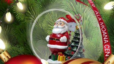 ハワイもホリデーシーズン到来!虹やクリスマスツリーが必見!