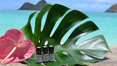 一年の疲れはアロマセラピーで癒す♡ハワイの香りでヒーリングしよう!
