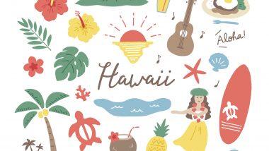 初めてのハワイにおすすめのベルトラツアー!厳選の3つをご紹介!