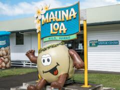マウナロア・マカデミア・ナッツ・ビジター・センター/MAUNA LOA MACADAMIA NUT VISITOR CENTER