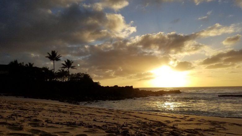 外出禁止令がでたハワイの様子。各自ができる対策もご紹介!