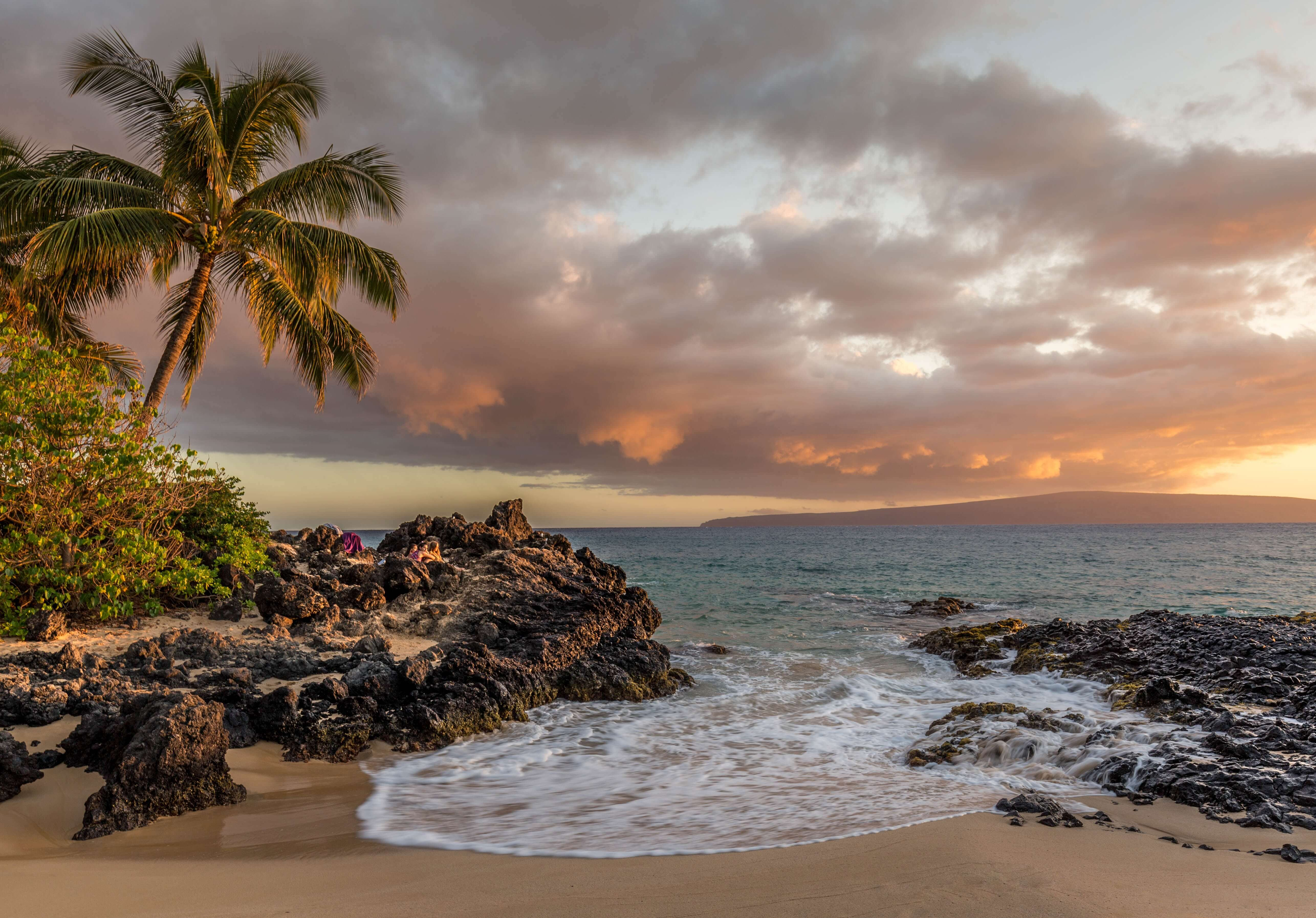 ハワイの様子