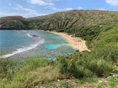 【4月25日現在】ハワイの新型コロナウィルス最新情報!ホノルルは自宅待機令が延長