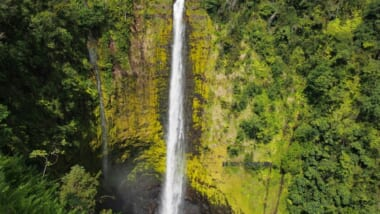 ハワイ島の名瀑アカカの滝で心を癒す!ハワイ旅行で行きたいパワースポット