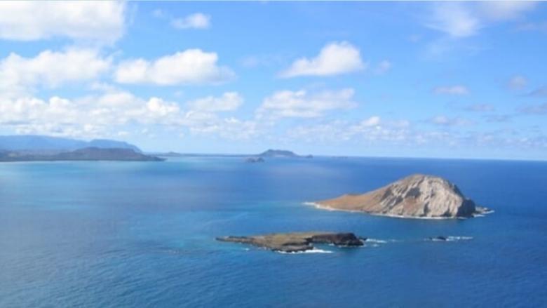 【5月13日現在】ハワイ州で新型コロナウイルスの動向!ロックダウン緩和の方向にあり