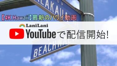 【4K HAWAII】最新のハワイ動画の配信を開始!ロックダウン解除後のワイキキをお届け♪