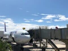 イゲ知事が米国本土からハワイ州への渡航再開許可を発表~その条件とは