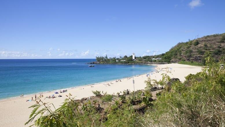ハワイと日本の海を守る!海洋ペットボトルから再生されたコラボレーションTシャツが受注販売受付中