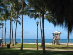 ハワイへの渡航の道のりは険しいのか~観光業の再開延期を求める決議案が可決