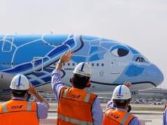 ANA フライングホヌのチャーターフライト~90分の遊覧飛行と機内全貌お見せします!