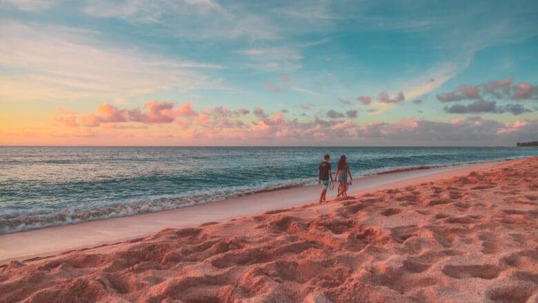 レンタカーを借りずにハワイ島を観光してみよう!ハワイ島のおすすめオプショナルツアーをご紹介