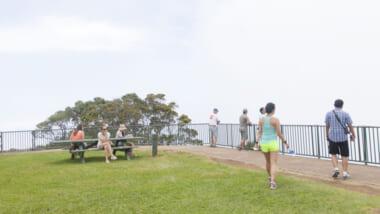 アフターコロナのハワイ旅で体験したいオプショナルツアー