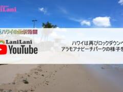 【4K HAWAII】ロックダウン中のハワイのビーチは単独利用のみ!アラモアナビーチパークの最新映像をお届け