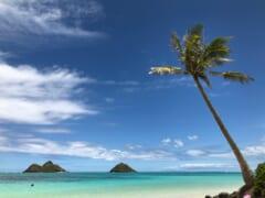 【最新のハワイのコロナ情勢】カウアイ島のリゾートバブル計画が一歩前進&「旅行前テストプログラム」がいよいよスタート!