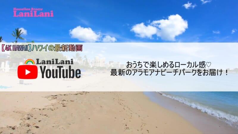 【4K HAWAII】ローカル感満載!おうちで楽しめるハワイのアラモアナビーチパークをお届け!