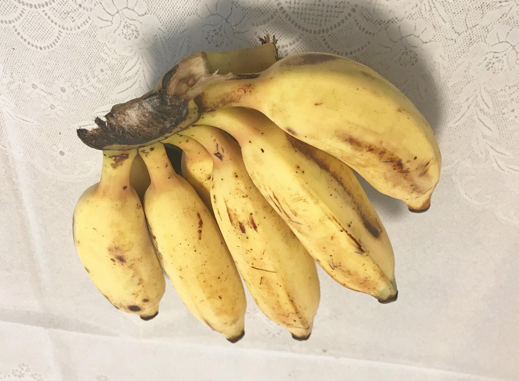 コストコ_バナナ