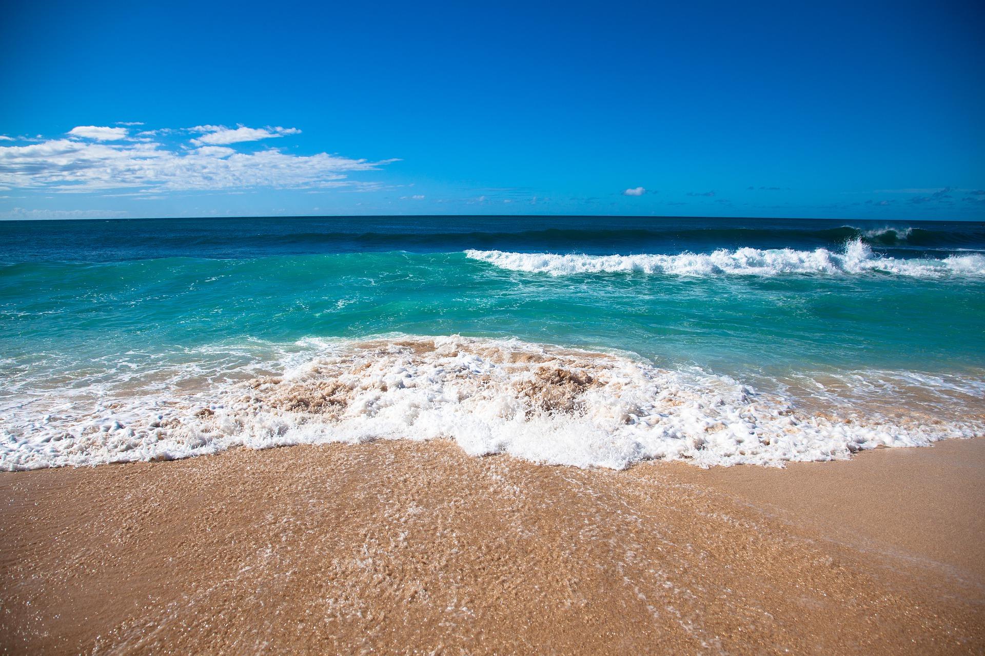 hawaii beach waves