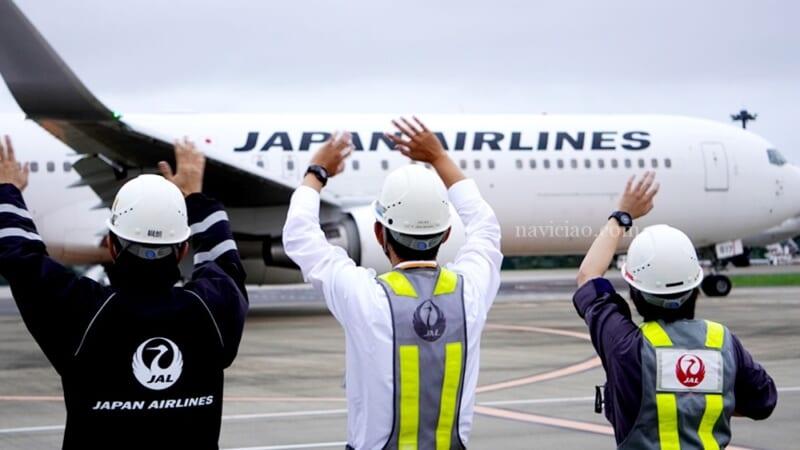 搭乗記念品や機内食も大公開!JAL「空たび☆星空フライト」レポします!