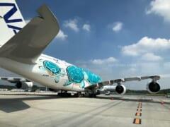 【3月12日締め切り】「ANAフライングホヌ」のチャーターフライトが3空港にて開催決定!