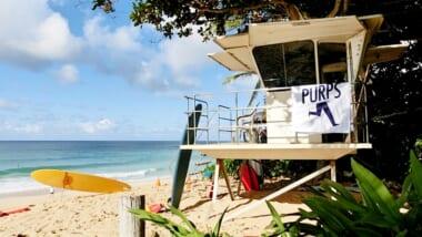コロナ禍で今季のハワイサーフィン大会を中止!「エディなら行くぜ」を忘れずに一歩を踏み出そう