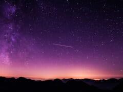 【速報!】JALが「夕暮れ・夜景を楽しむチャーターフライト」を運航
