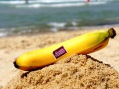 ハワイのバナナの歴史とは?おすすめのバナナや調理法もご紹介