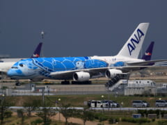 【1月15日更新】「日本 ー ハワイ」の最新運航情報