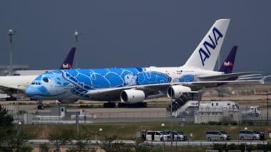 【11月30日更新】「日本 ー ハワイ」の最新運航情報