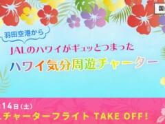 【10/22締め切り】JALが「機内でハワイ気分を味わえる」羽田発着のチャーターフライトやります!