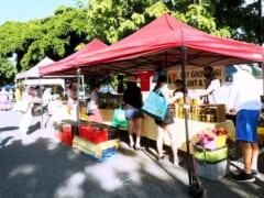 【在住者レポート】KCCファーマーズマーケットが再開!初日の様子と感染対策で気をつけるべきこと