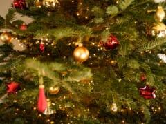 クリスマスツリーにキラキラのハワイを飾ろう!「ホノルル・シティ・ライツ」のイヤーオーナメント販売中