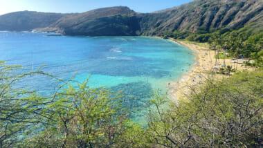【在住者レポート】ハワイのハナウマ湾が再開!現状の様子と今は行かない方が良い理由