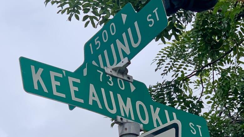 アラモアナセンター近くの「ケエアウモク通り/Keeaumoku Street」の名前の由来は?キングメーカーと呼ばれていた「ケエアウモク」の歴史に迫る!