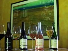 レーガン大統領の就任式に使われた大切なワインも?マウイ島アップカントリーにある老舗ワイナリー「マウイズ・ワイナリー」をご紹介